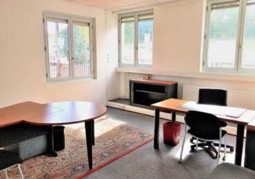 Nos bureaux - Bureau de 25m2 de forme carrée orienté Sud et Est.